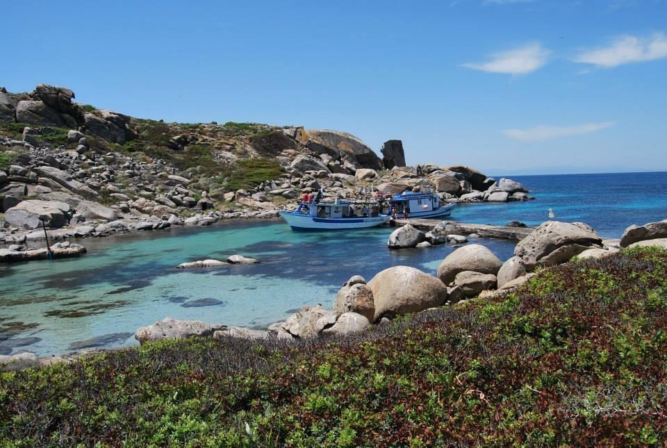 Attracco all'Isola dei Cavoli